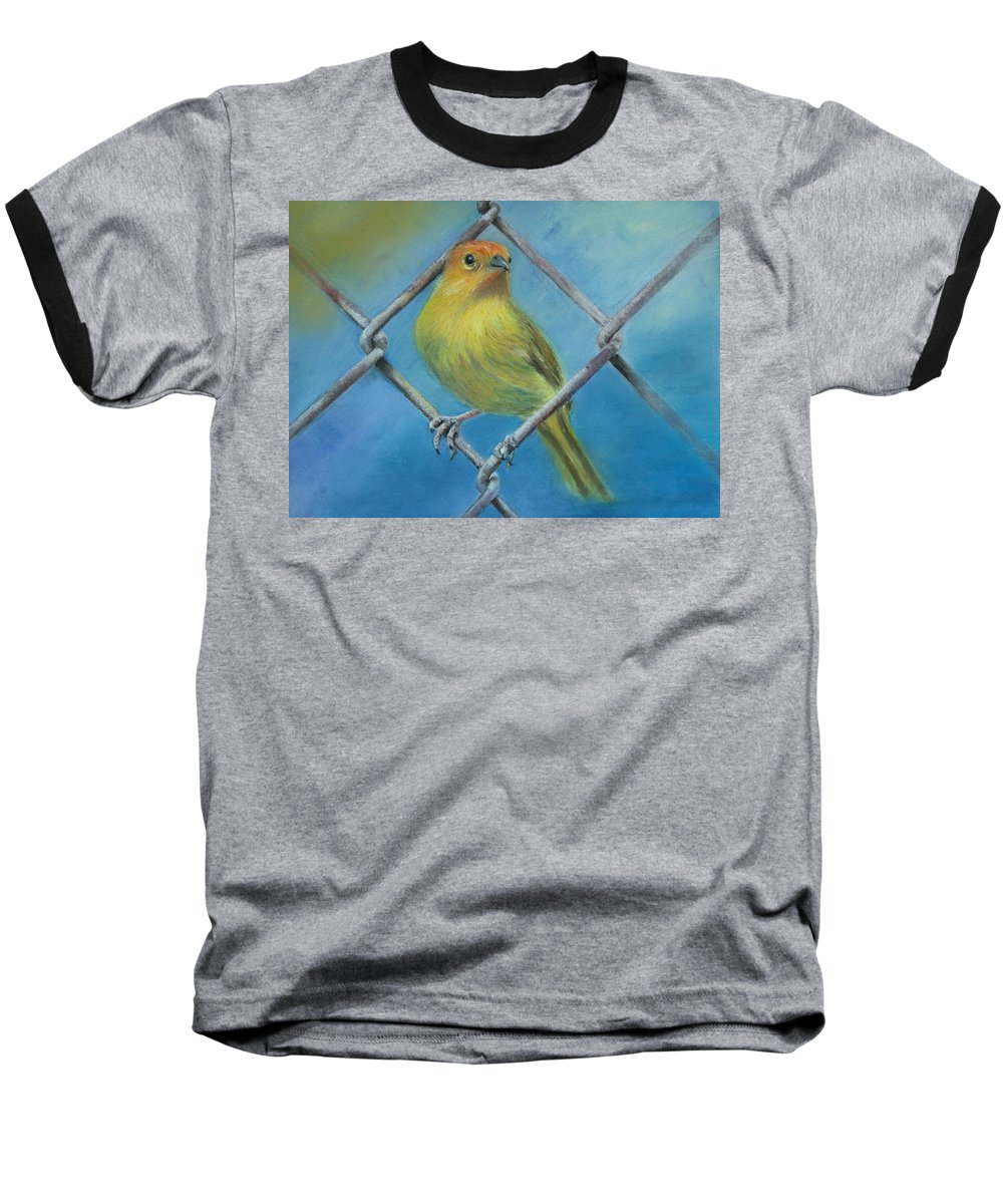 Bird Baseball T-Shirt featuring the painting Safron Finch by Ceci Watson