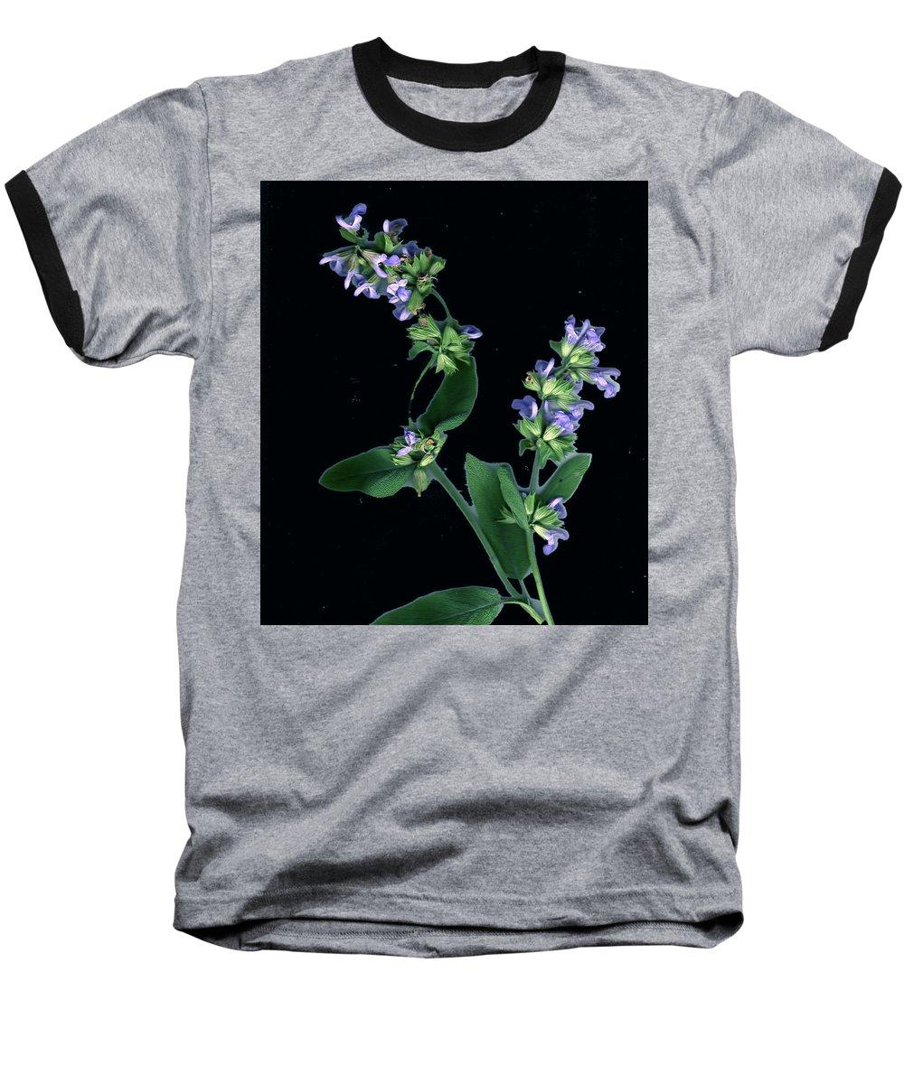 Baseball T-Shirt featuring the photograph Sage Blossom by Wayne Potrafka