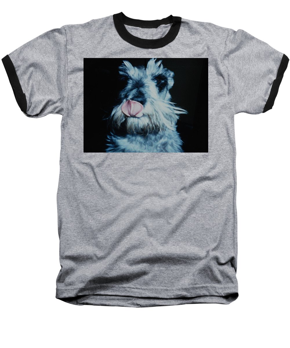Dogs Baseball T-Shirt featuring the photograph Sam The Fat Cow by Rob Hans