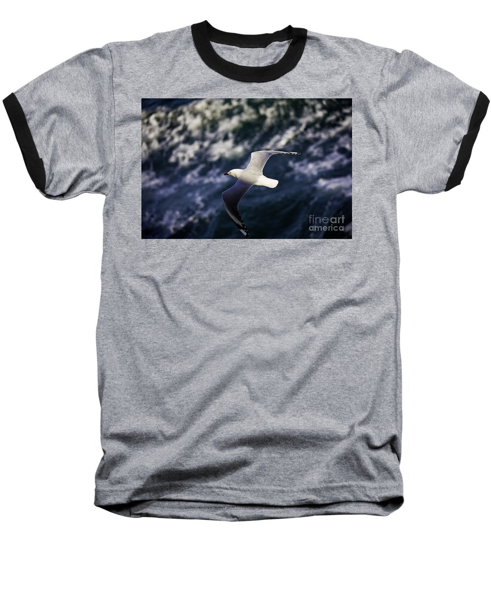Seagull Baseball T-Shirt featuring the photograph Seagull In Wake by Sheila Smart Fine Art Photography