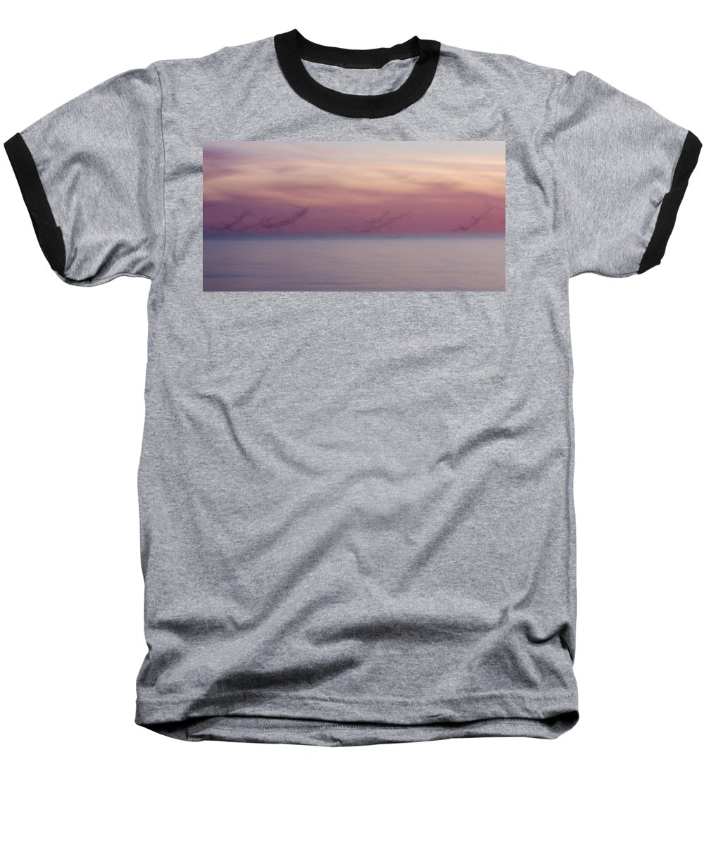 3scape Baseball T-Shirt featuring the photograph Seagulls In Motion by Adam Romanowicz