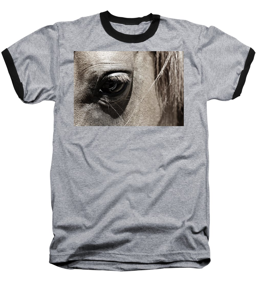 Americana Baseball T-Shirt featuring the photograph Stillness In The Eye Of A Horse by Marilyn Hunt