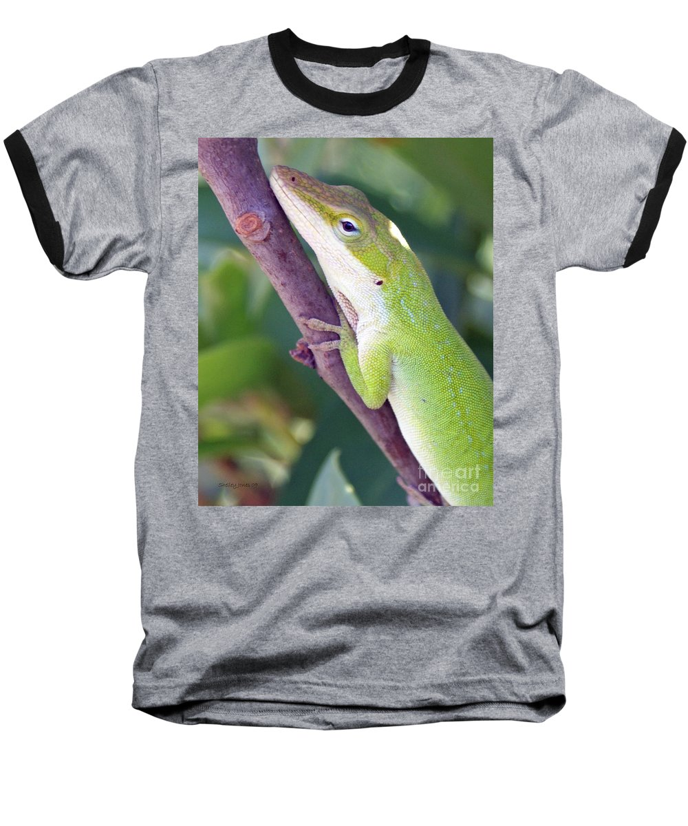 Animal Baseball T-Shirt featuring the photograph Smile by Shelley Jones