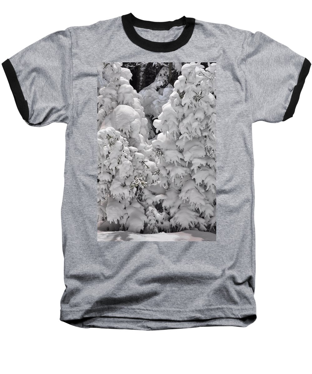 Snow Baseball T-Shirt featuring the photograph Snow Coat by Alex Grichenko
