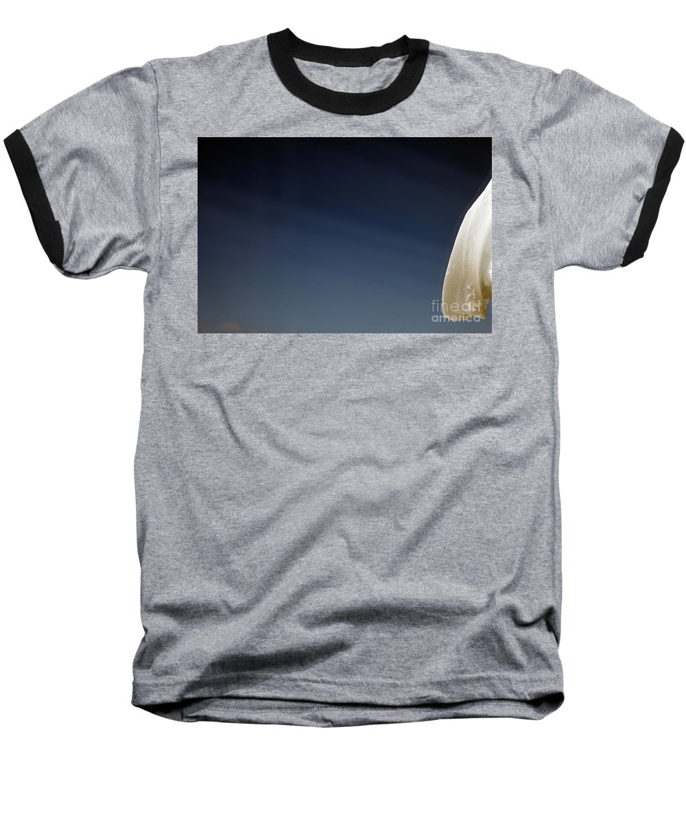 Snow Baseball T-Shirt featuring the photograph Snow Day by Amanda Barcon