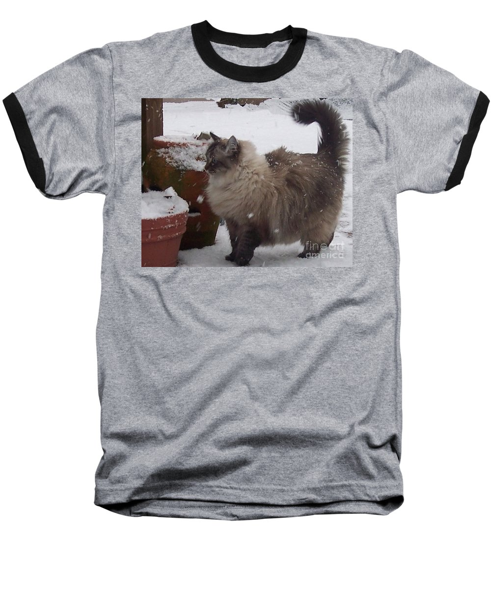 Cats Baseball T-Shirt featuring the photograph Snow Kitty by Debbi Granruth