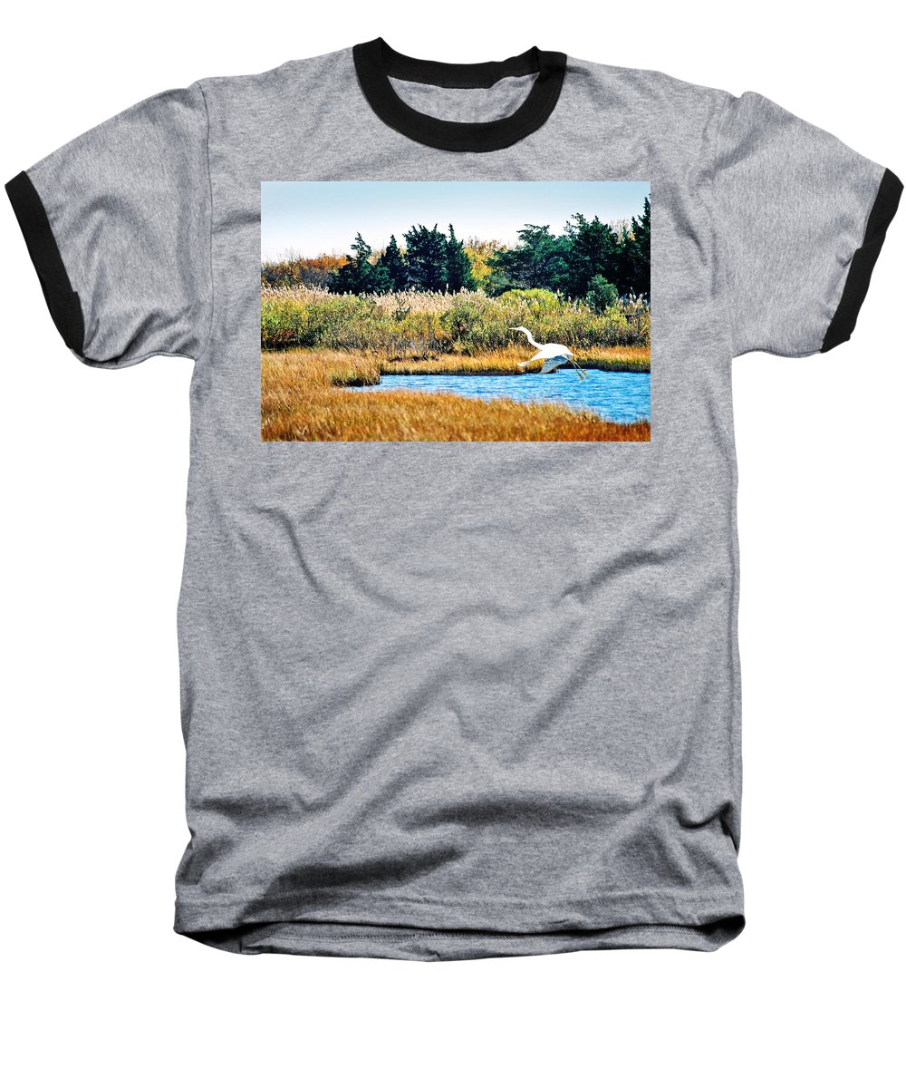 Landscape Baseball T-Shirt featuring the photograph Snowy Egret-island Beach State Park N.j. by Steve Karol