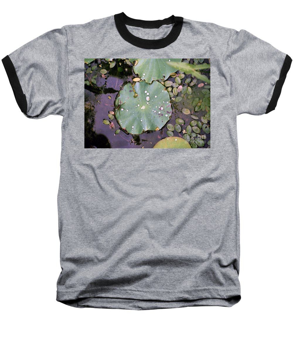 Lillypad Baseball T-Shirt featuring the photograph Spider And Lillypad by Richard Rizzo