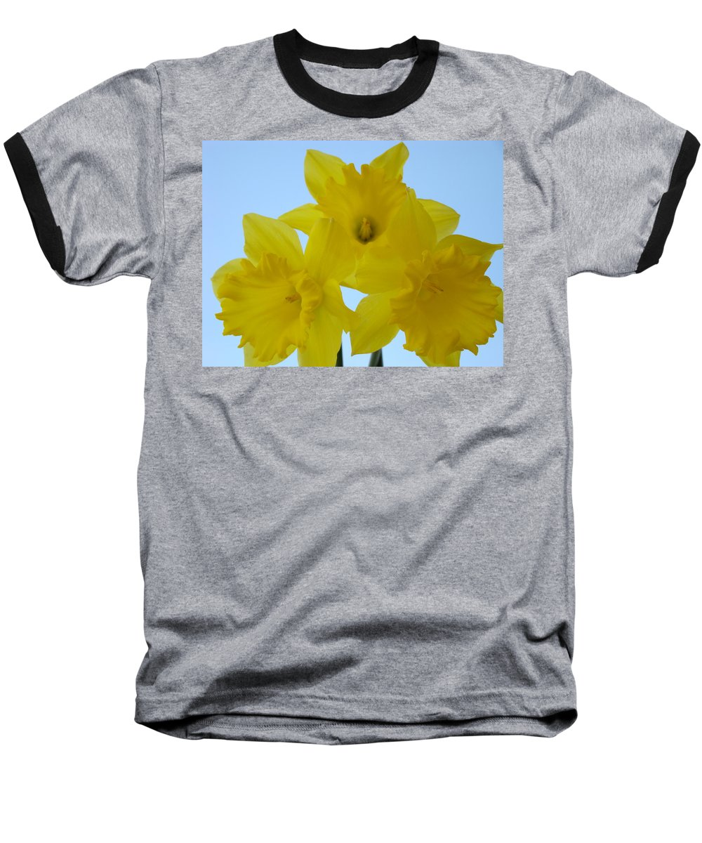 �daffodils Artwork� Baseball T-Shirt featuring the photograph Spring Daffodils 2 Flowers Art Prints Gifts Blue Sky by Baslee Troutman