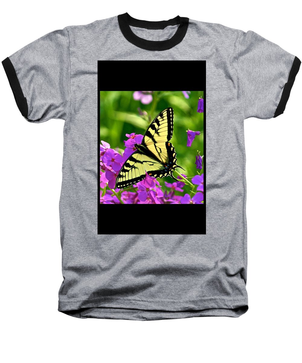 Butterfly Baseball T-Shirt featuring the photograph Spring Glory by Robert Pearson