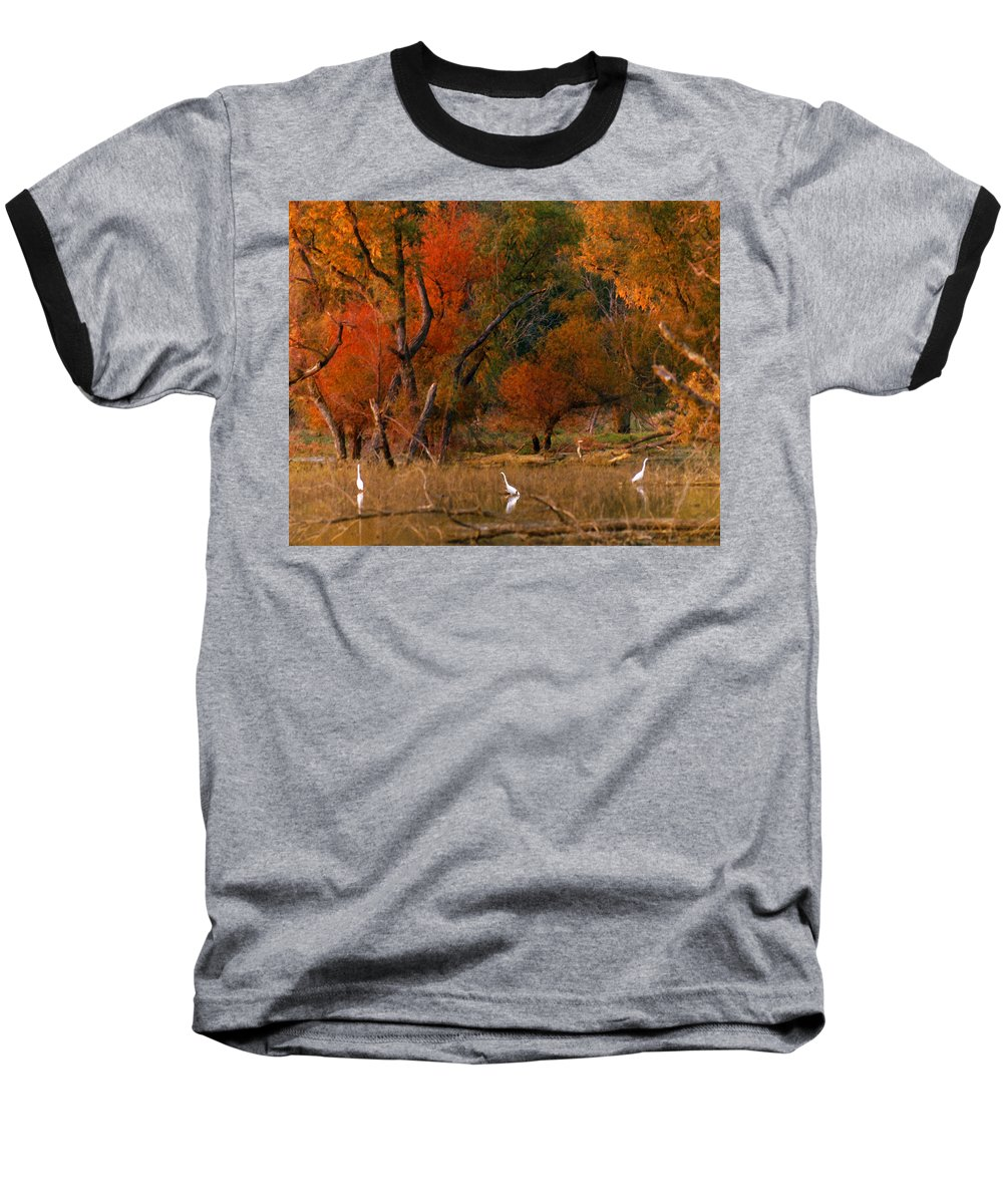 Landscape Baseball T-Shirt featuring the photograph Squaw Creek Egrets by Steve Karol