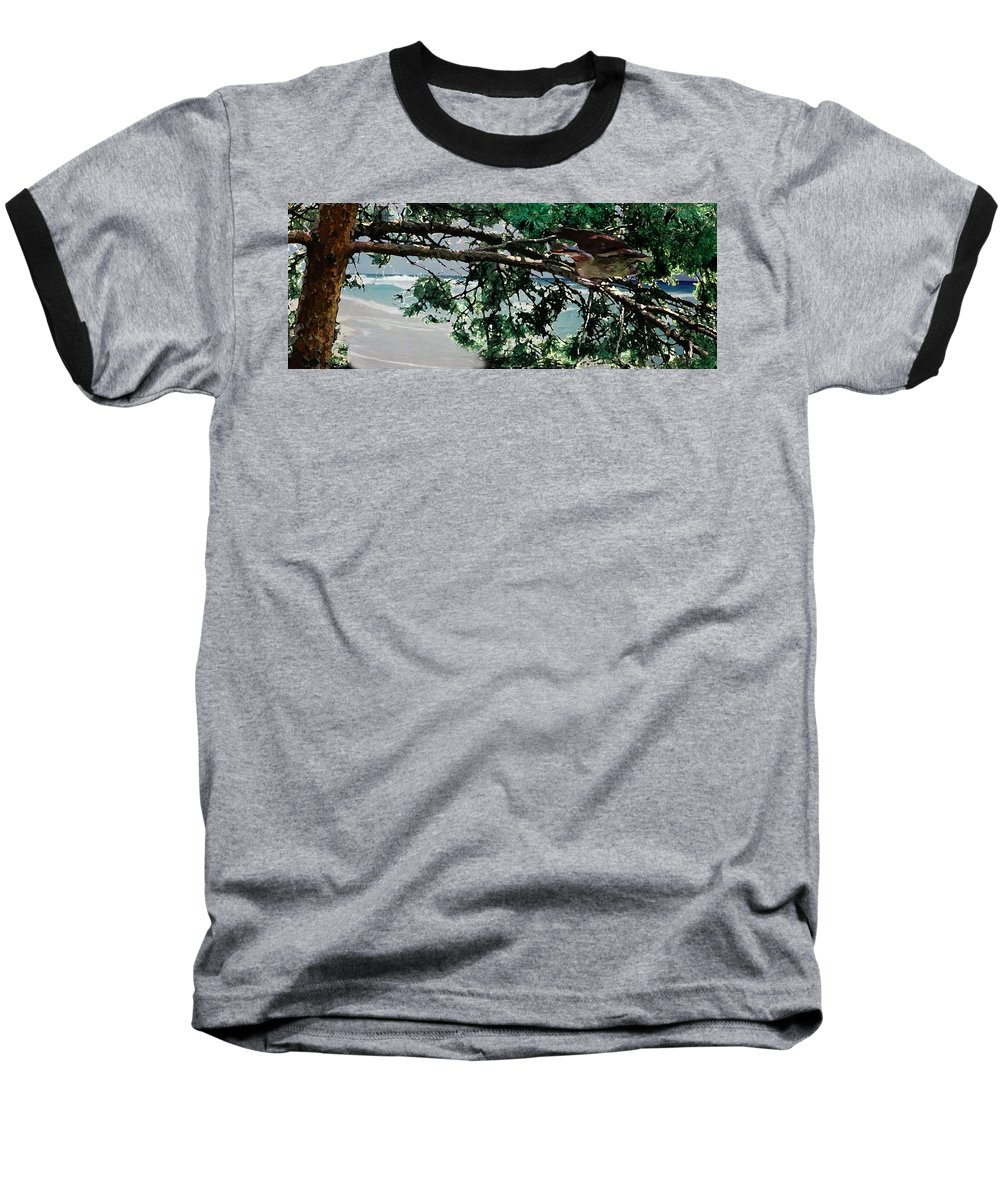 Landscape Baseball T-Shirt featuring the painting Stealth by Steve Karol