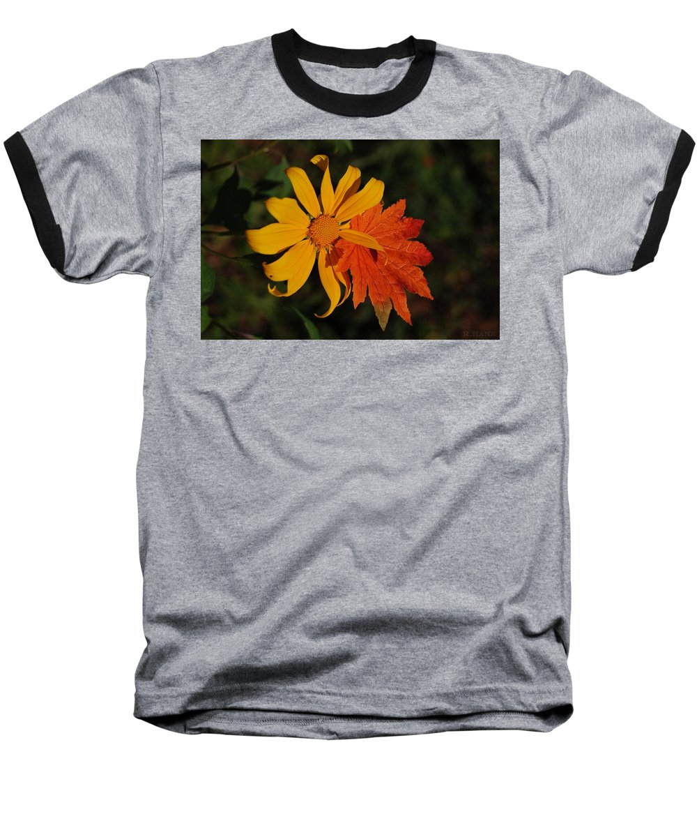 Pop Art Baseball T-Shirt featuring the photograph Sun Flower And Leaf by Rob Hans