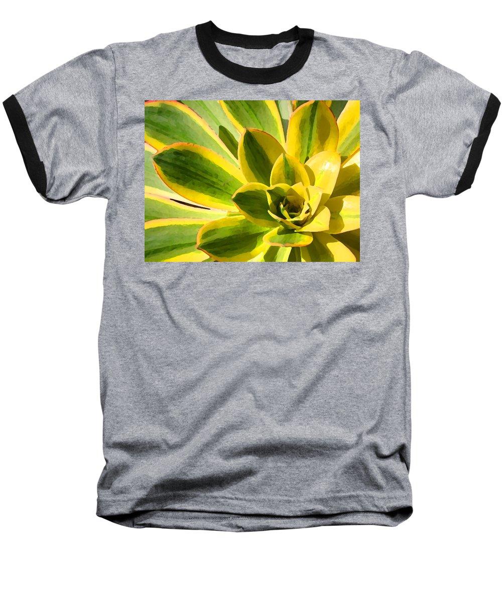 Landscape Baseball T-Shirt featuring the photograph Sunburst Succulent Close-up 2 by Amy Vangsgard