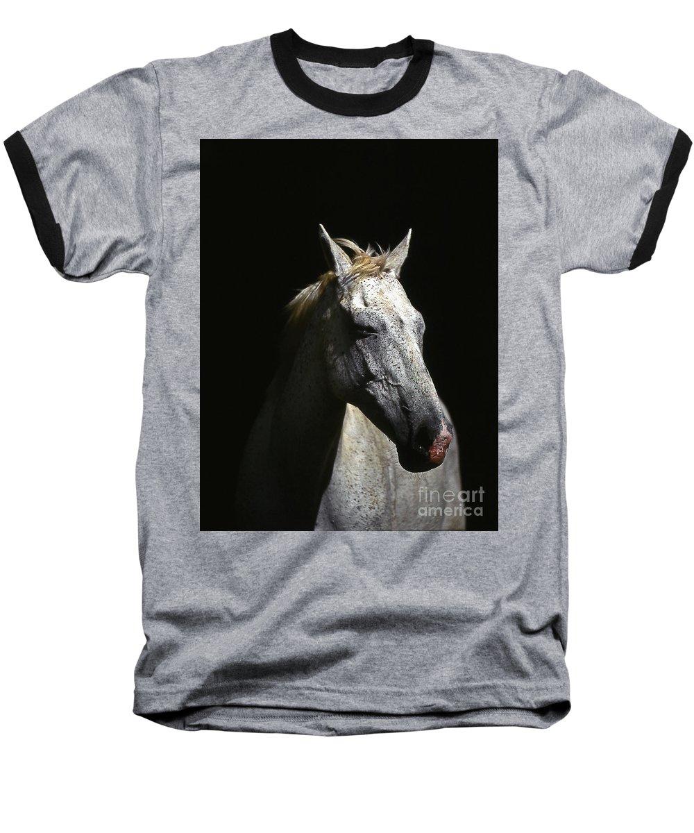 Horse Baseball T-Shirt featuring the photograph Sundance by Jim Cazel