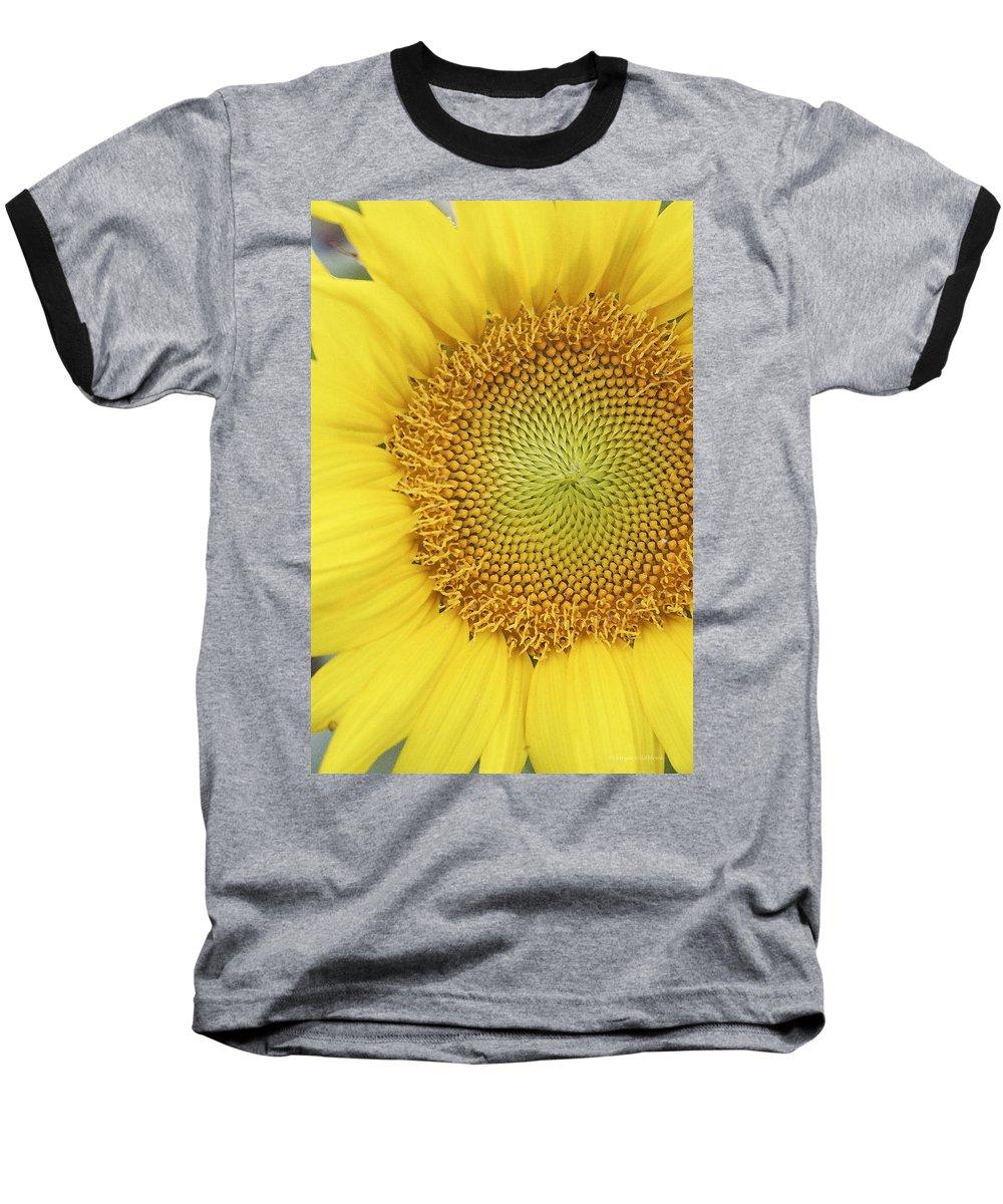 Sunflower Baseball T-Shirt featuring the photograph Sunflower by Margie Wildblood