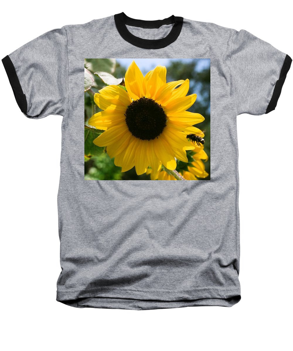 Flower Baseball T-Shirt featuring the photograph Sunflower With Bee by Dean Triolo