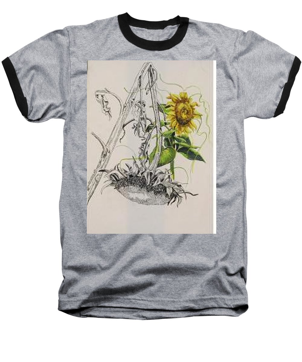 Large Sunflowers Featured Baseball T-Shirt featuring the painting Sunflowers by Wanda Dansereau