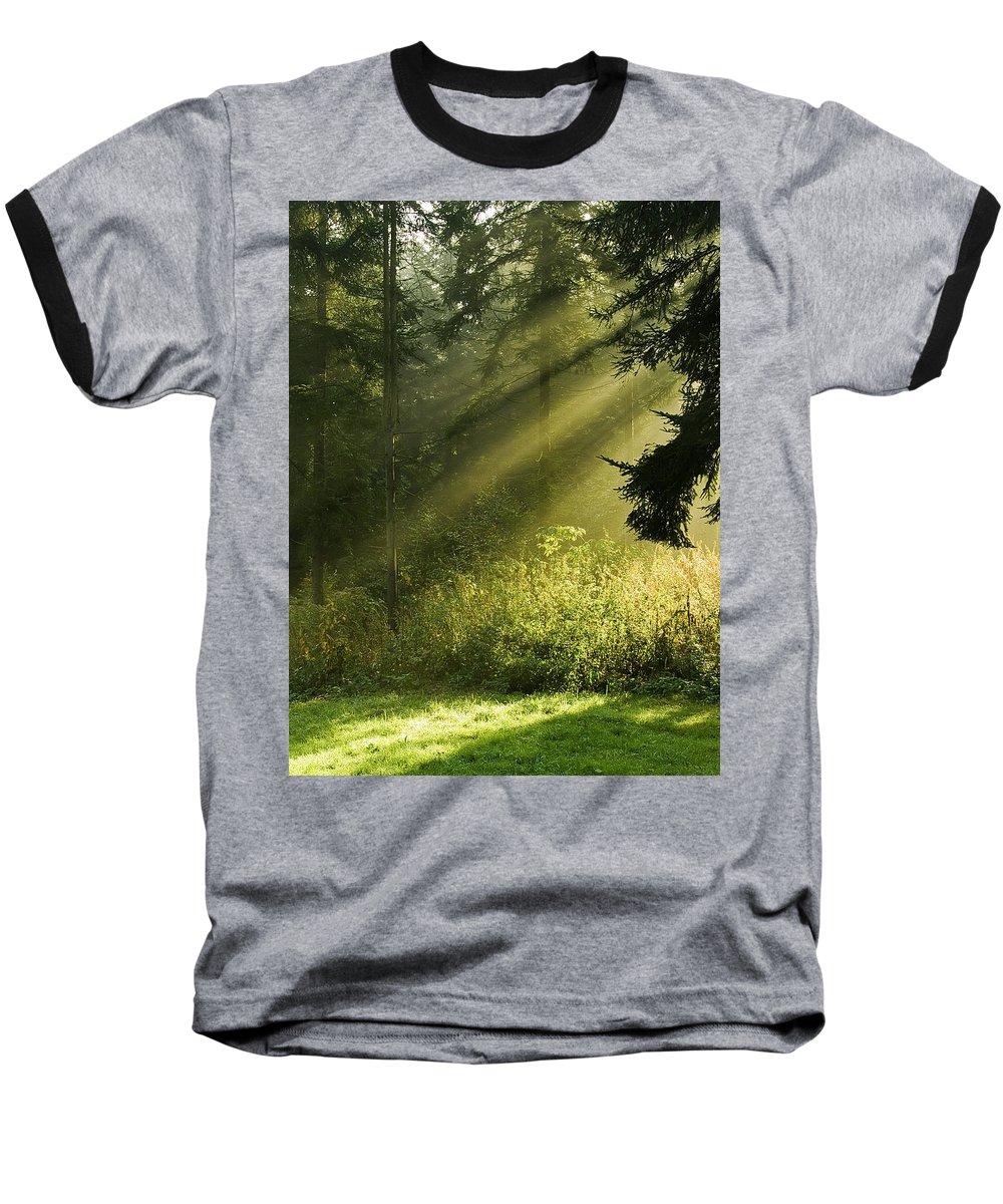 Nature Baseball T-Shirt featuring the photograph Sunlight by Daniel Csoka