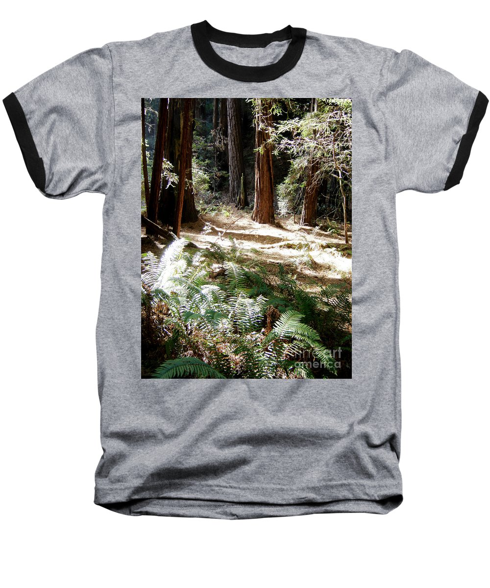 Sunlight Baseball T-Shirt featuring the photograph Sunlight On Path by Mary Rogers
