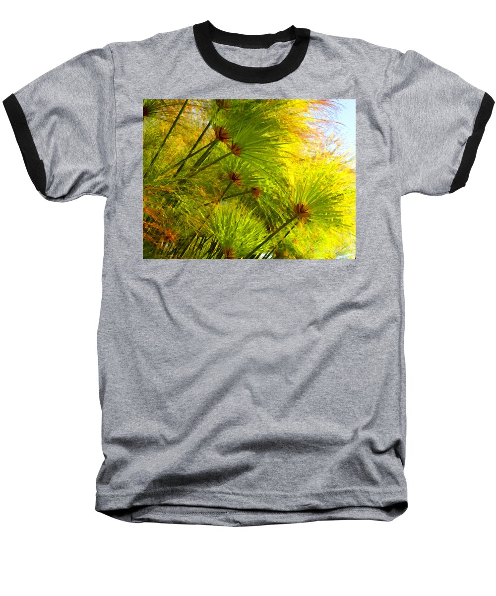 Landscape Baseball T-Shirt featuring the painting Sunlit Paparus by Amy Vangsgard