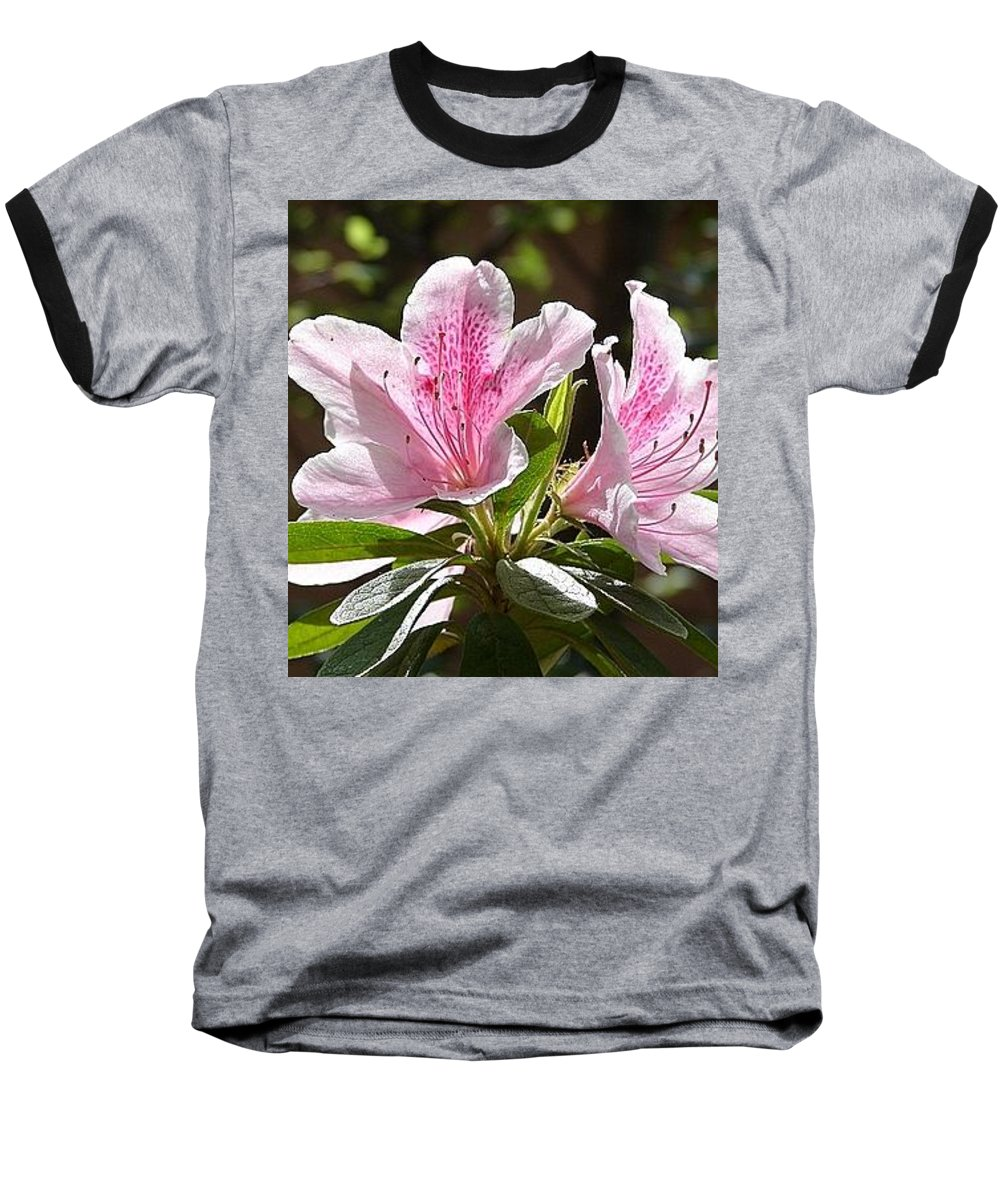 Lily Pinkgreen Pedals Leaves Baseball T-Shirt featuring the photograph Sunshine by Luciana Seymour