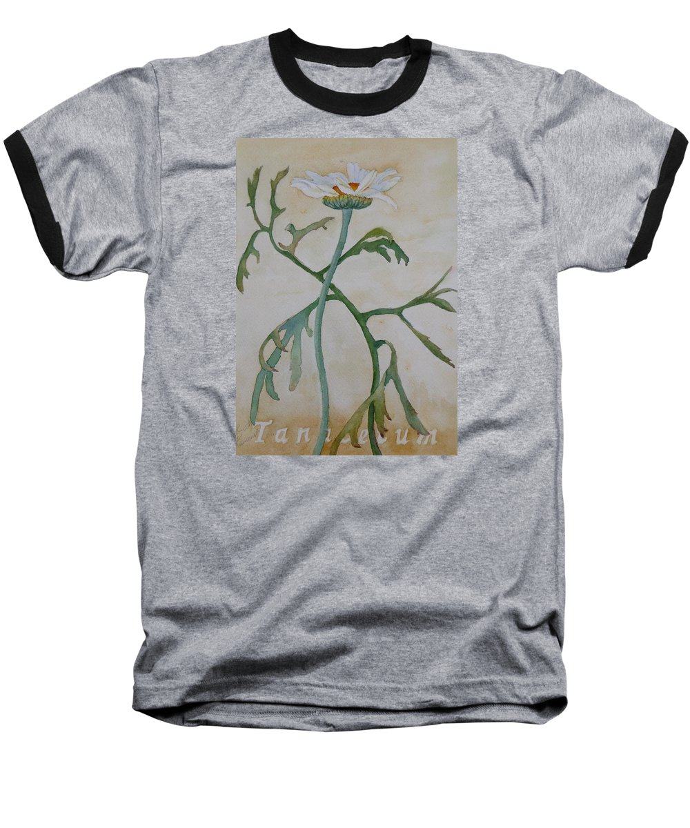 Flower Baseball T-Shirt featuring the painting Tanacetum by Ruth Kamenev
