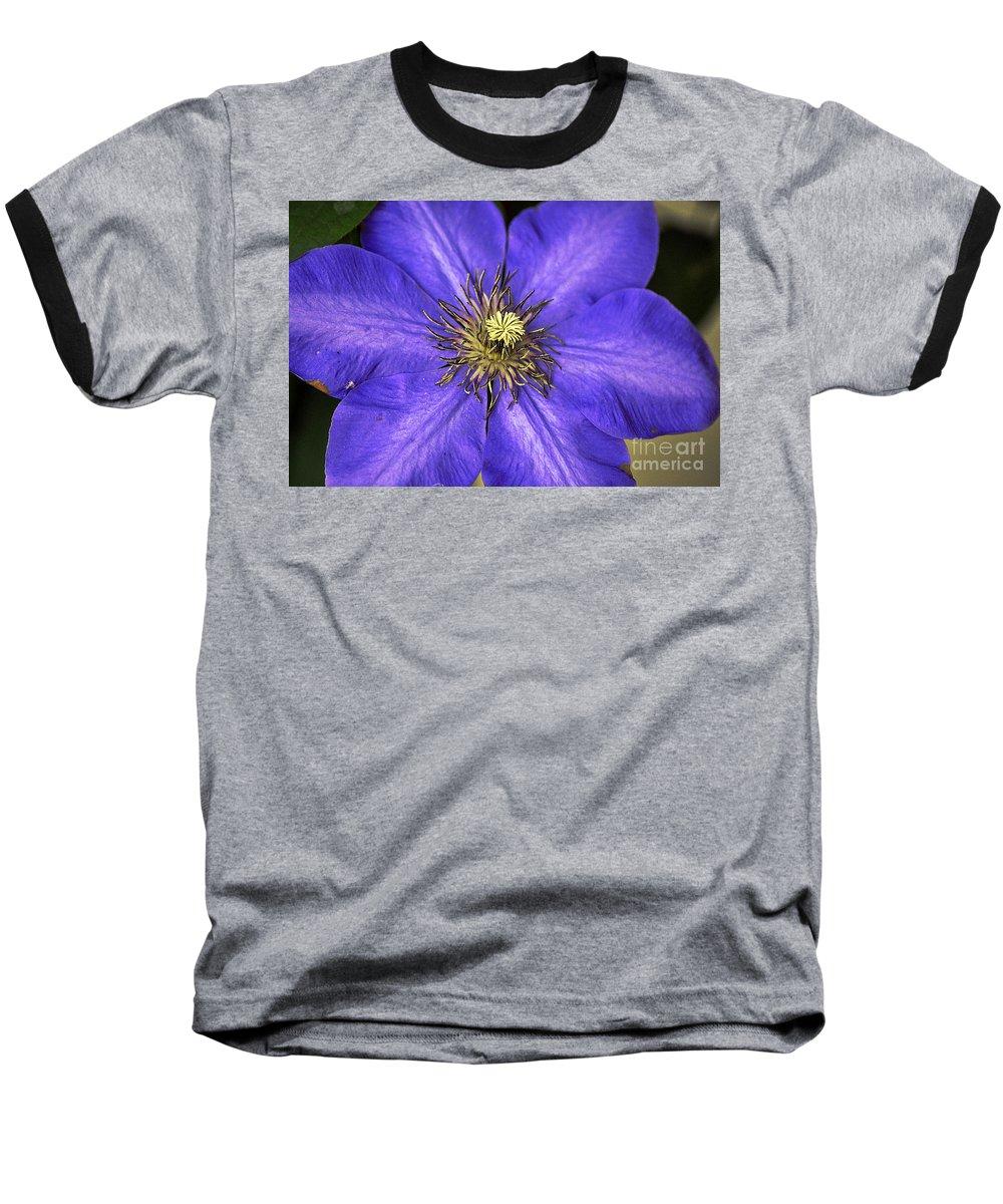 Clay Baseball T-Shirt featuring the photograph Tenticles by Clayton Bruster