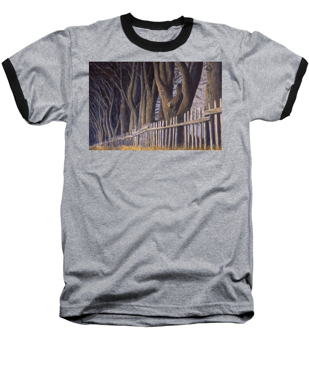 Bird House Baseball T-Shirt featuring the painting The Bird House by Jerry McElroy