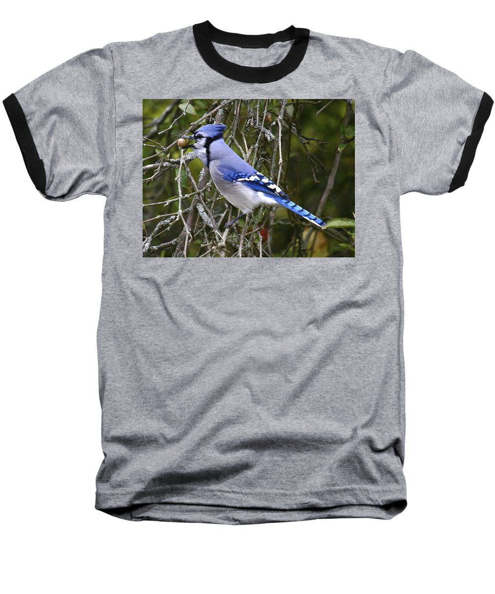 Bird Baseball T-Shirt featuring the photograph The Gathering by Robert Pearson