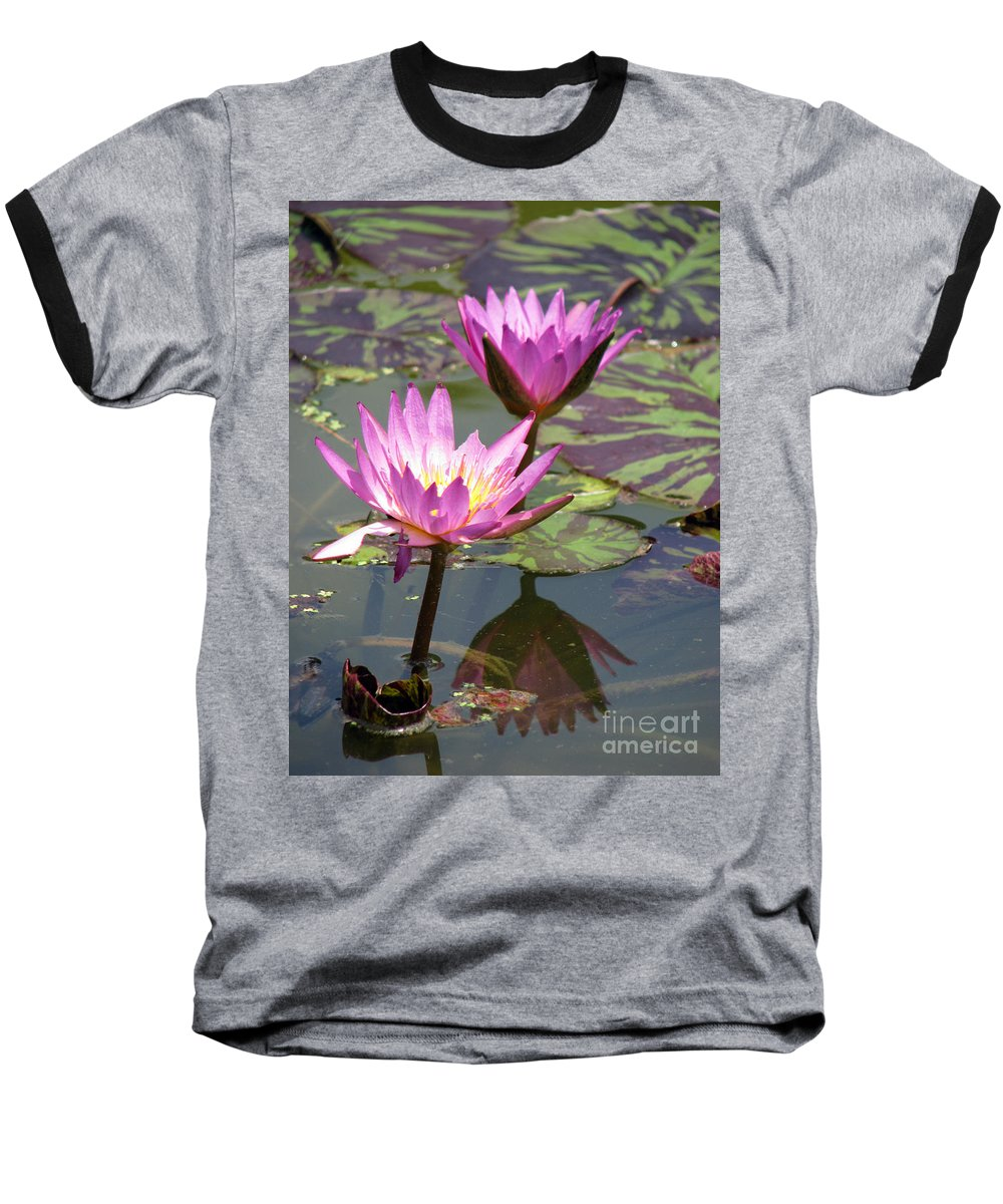 Lillypad Baseball T-Shirt featuring the photograph The Pond by Amanda Barcon