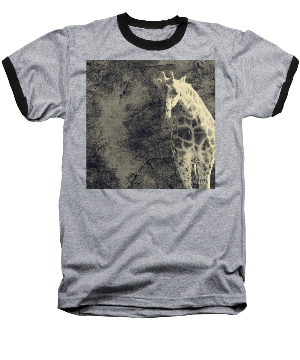 Dipasquale Baseball T-Shirt featuring the photograph ...the Vast Expanses Of The Earth by Dana DiPasquale