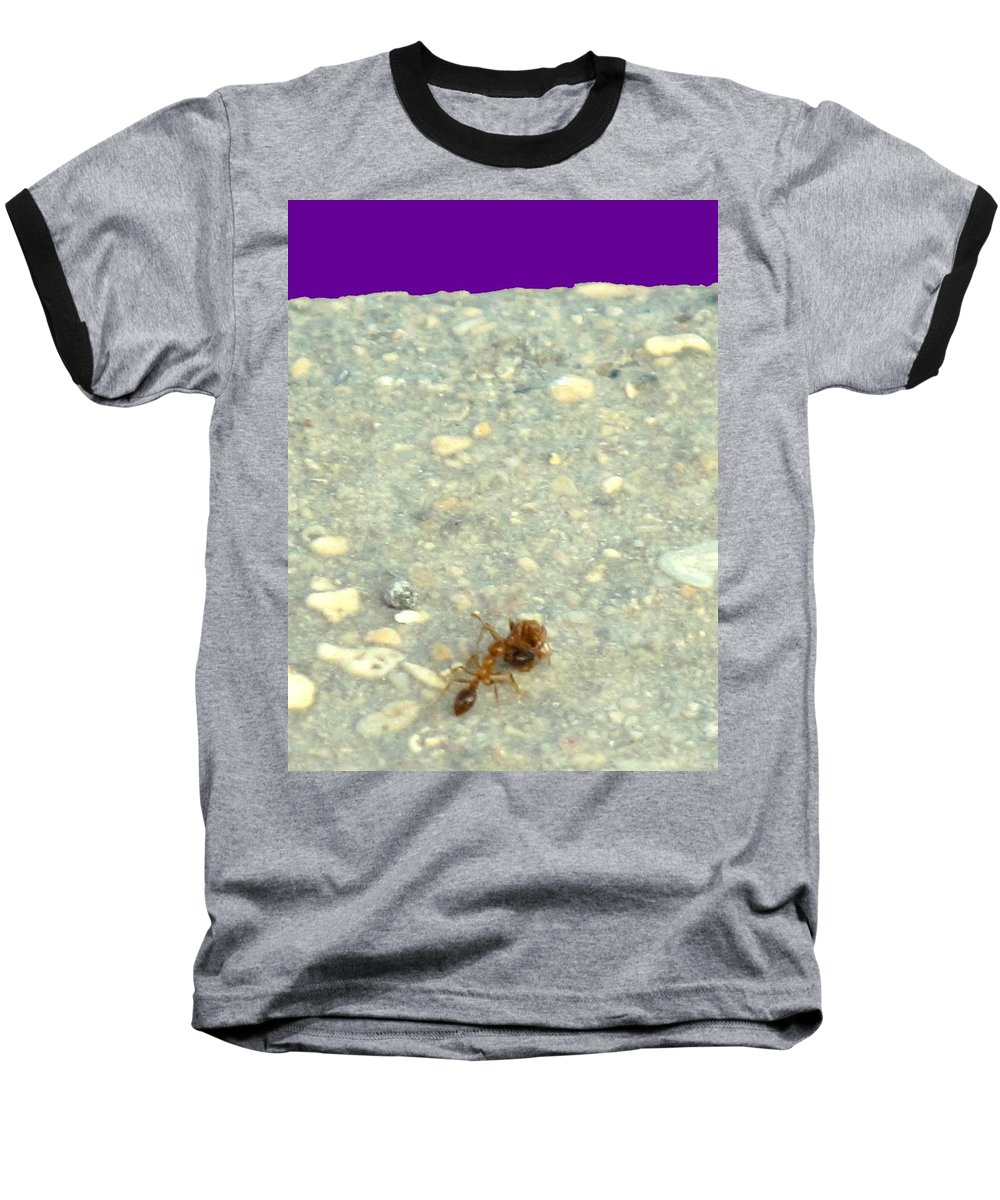 Ant Baseball T-Shirt featuring the photograph To The Edge by Ian MacDonald