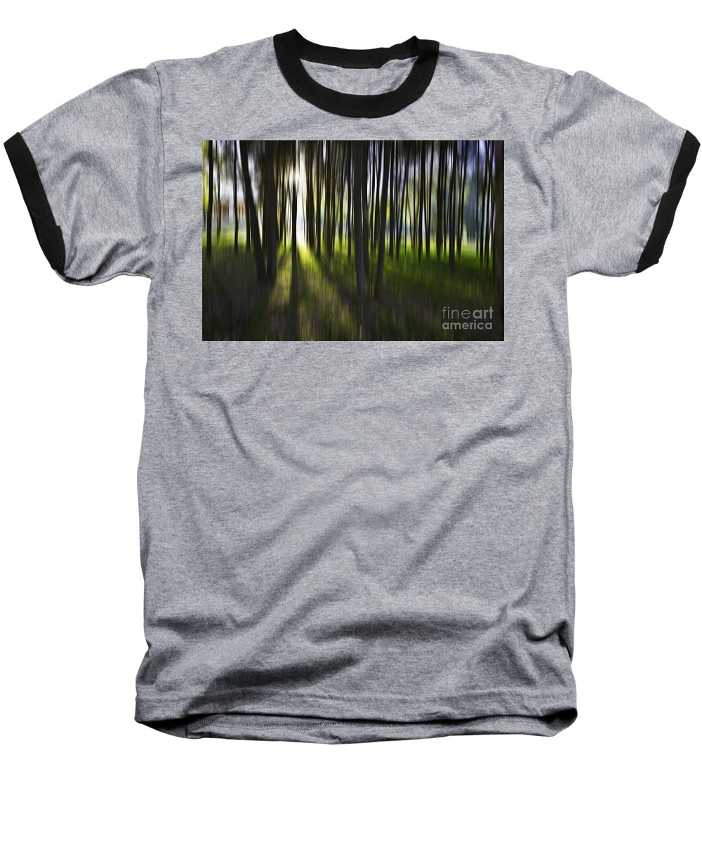 Trees Abstract Tree Lines Forest Wood Baseball T-Shirt featuring the photograph Tree Abstract by Sheila Smart Fine Art Photography