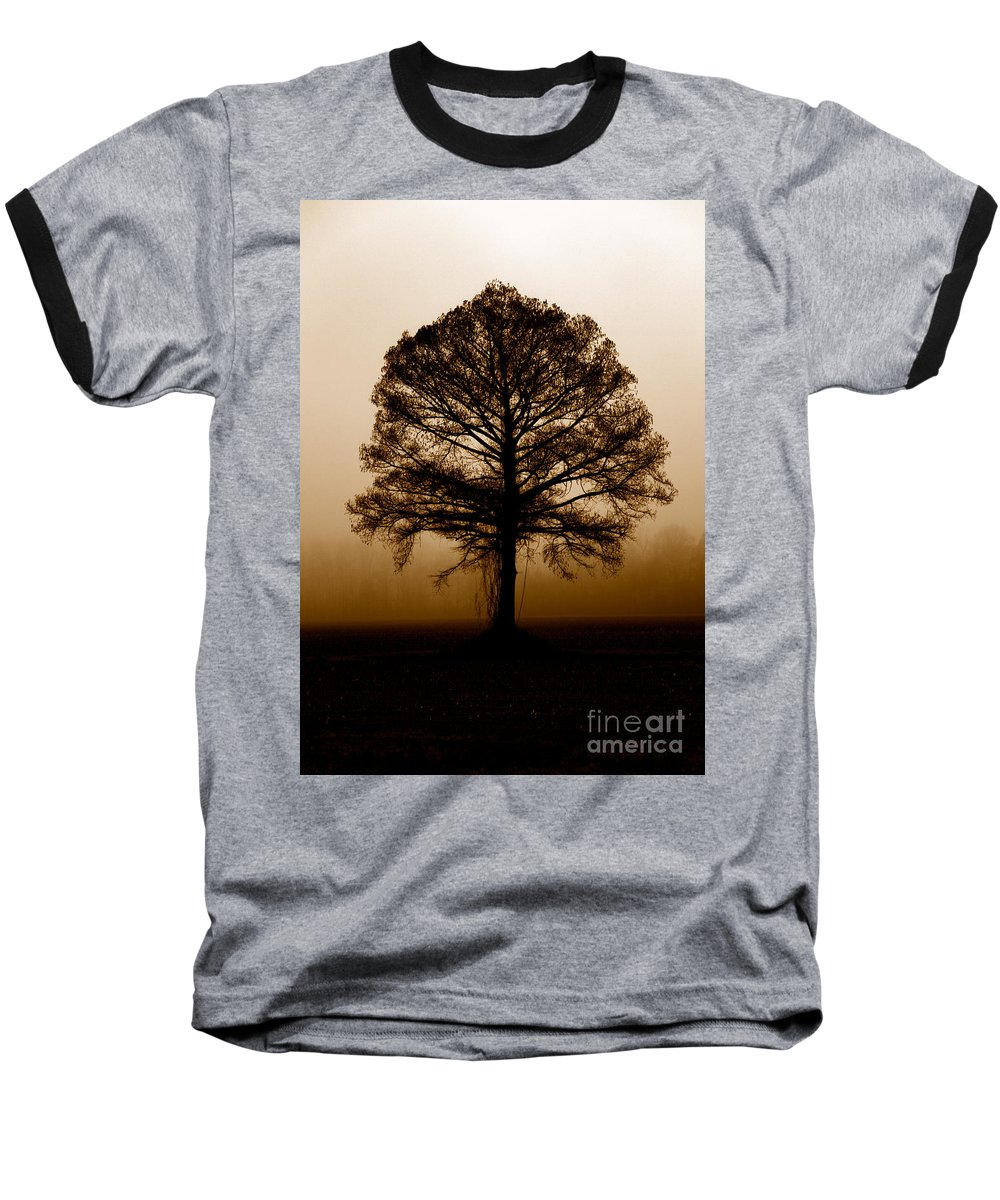Trees Baseball T-Shirt featuring the photograph Tree by Amanda Barcon