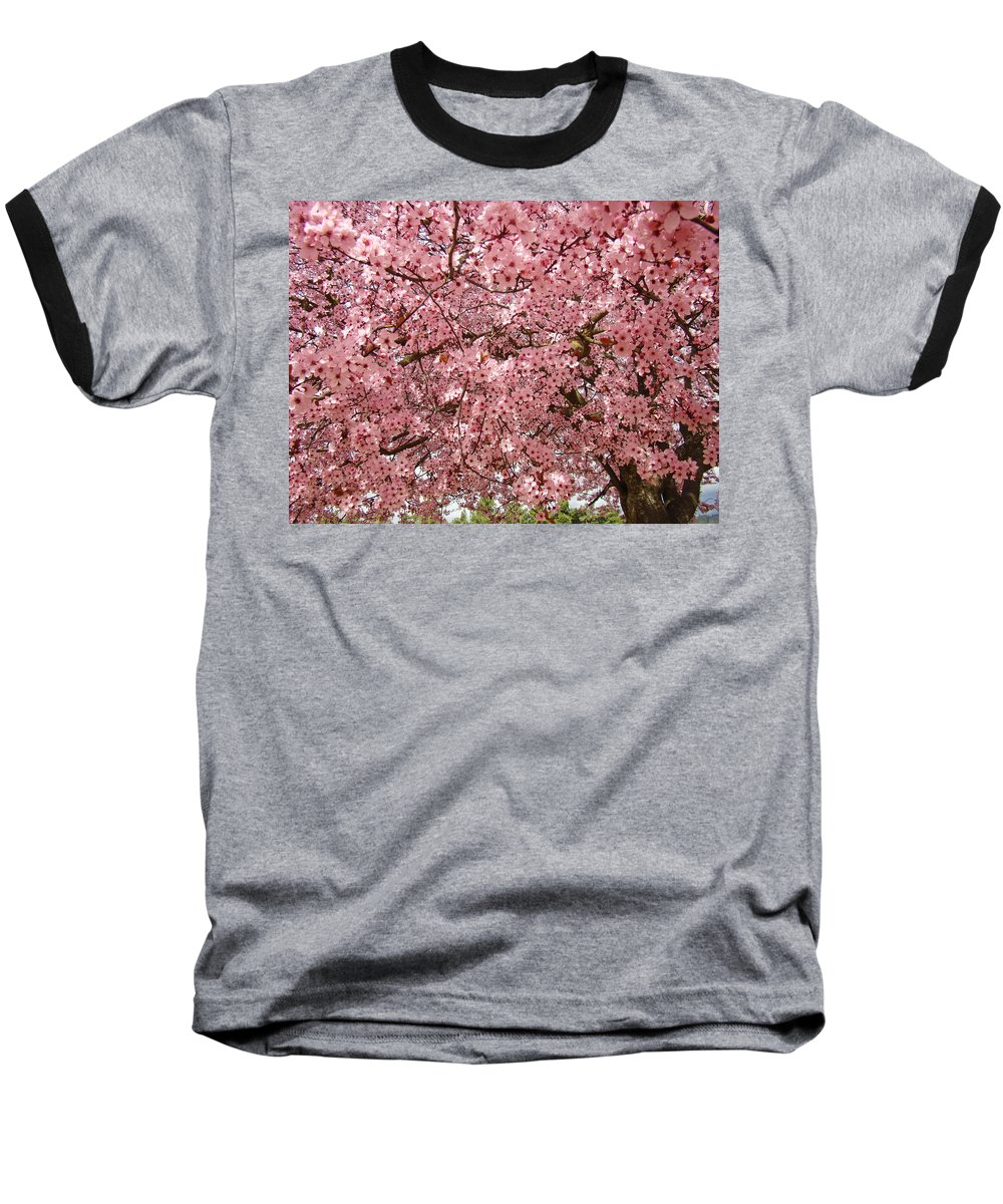 Tree Baseball T-Shirt featuring the photograph Tree Blossoms Pink Blossoms Art Prints Giclee Flower Landscape Artwork by Baslee Troutman