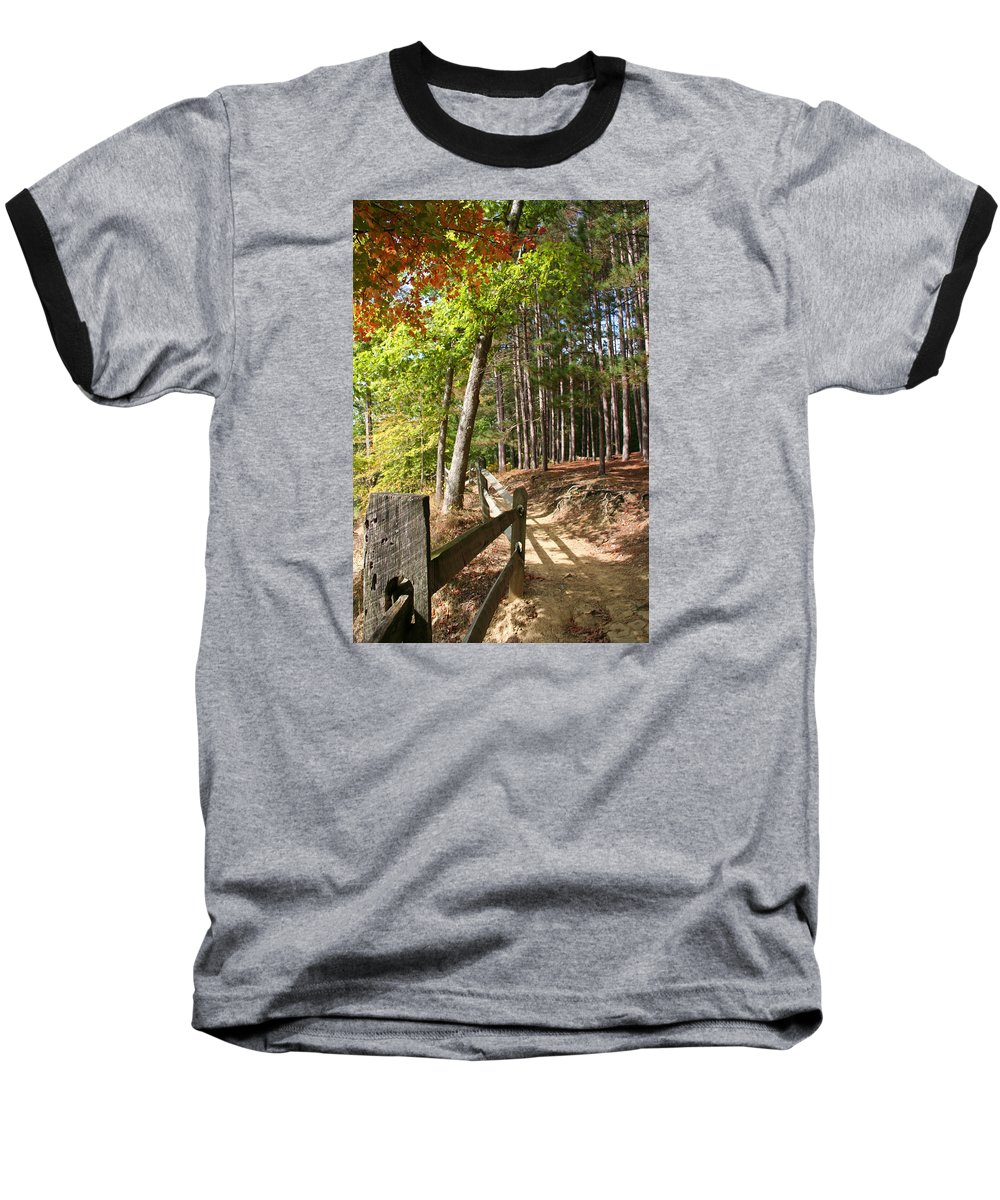 Tree Baseball T-Shirt featuring the photograph Tree Trail by Margie Wildblood