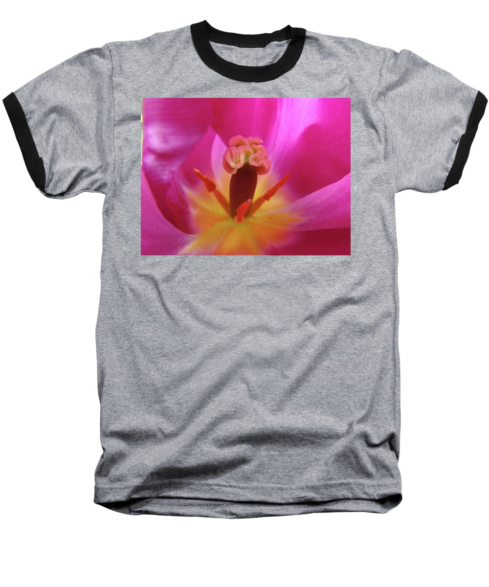�tulips Artwork� Baseball T-Shirt featuring the photograph Tulips Artwork Pink Purple Tuli Flower Art Prints Spring Garden Nature by Baslee Troutman