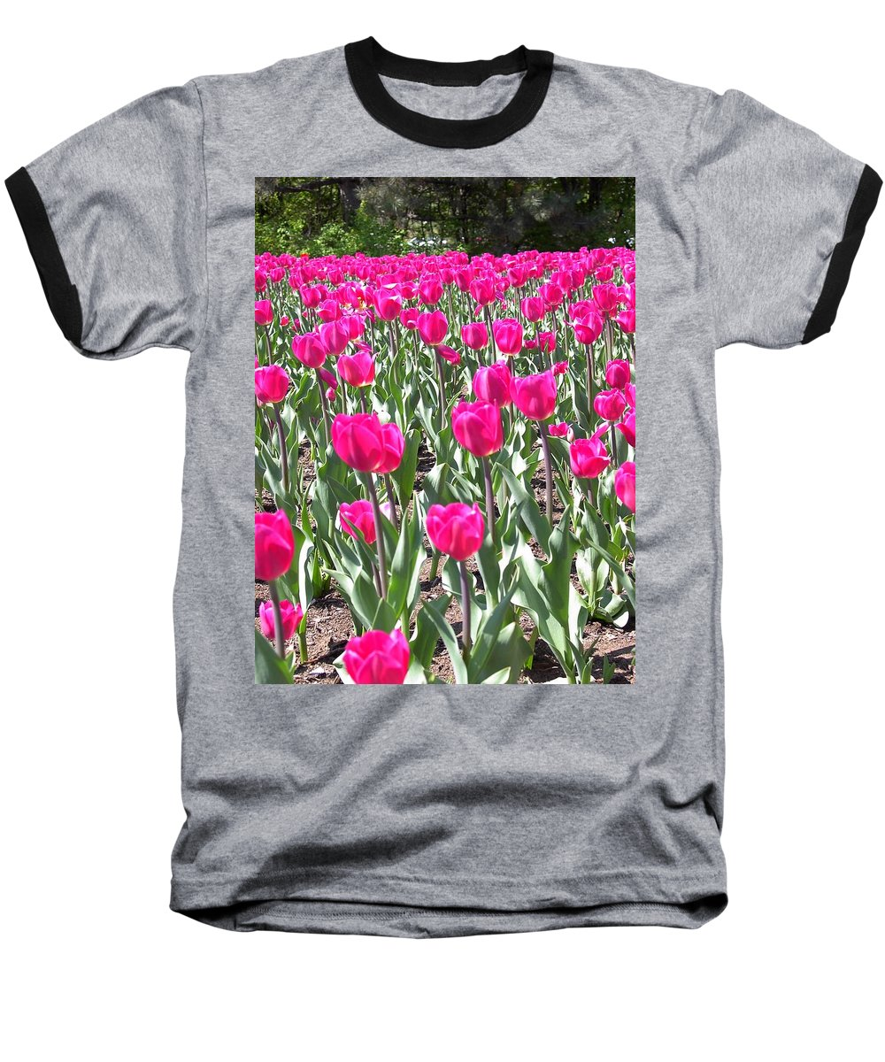 Charity Baseball T-Shirt featuring the photograph Tulips by Mary-Lee Sanders