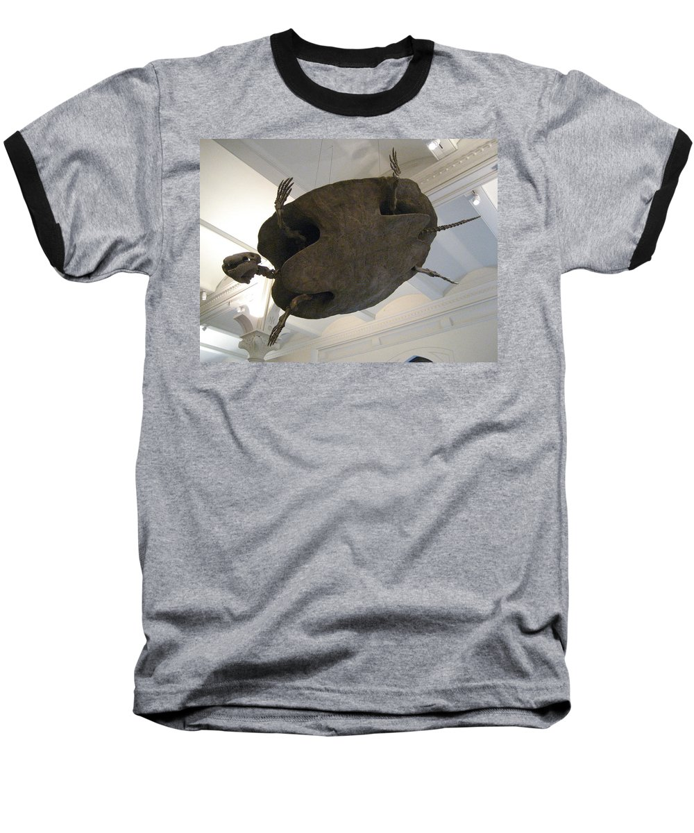 Turtle Baseball T-Shirt featuring the photograph Turtle by Brian McDunn