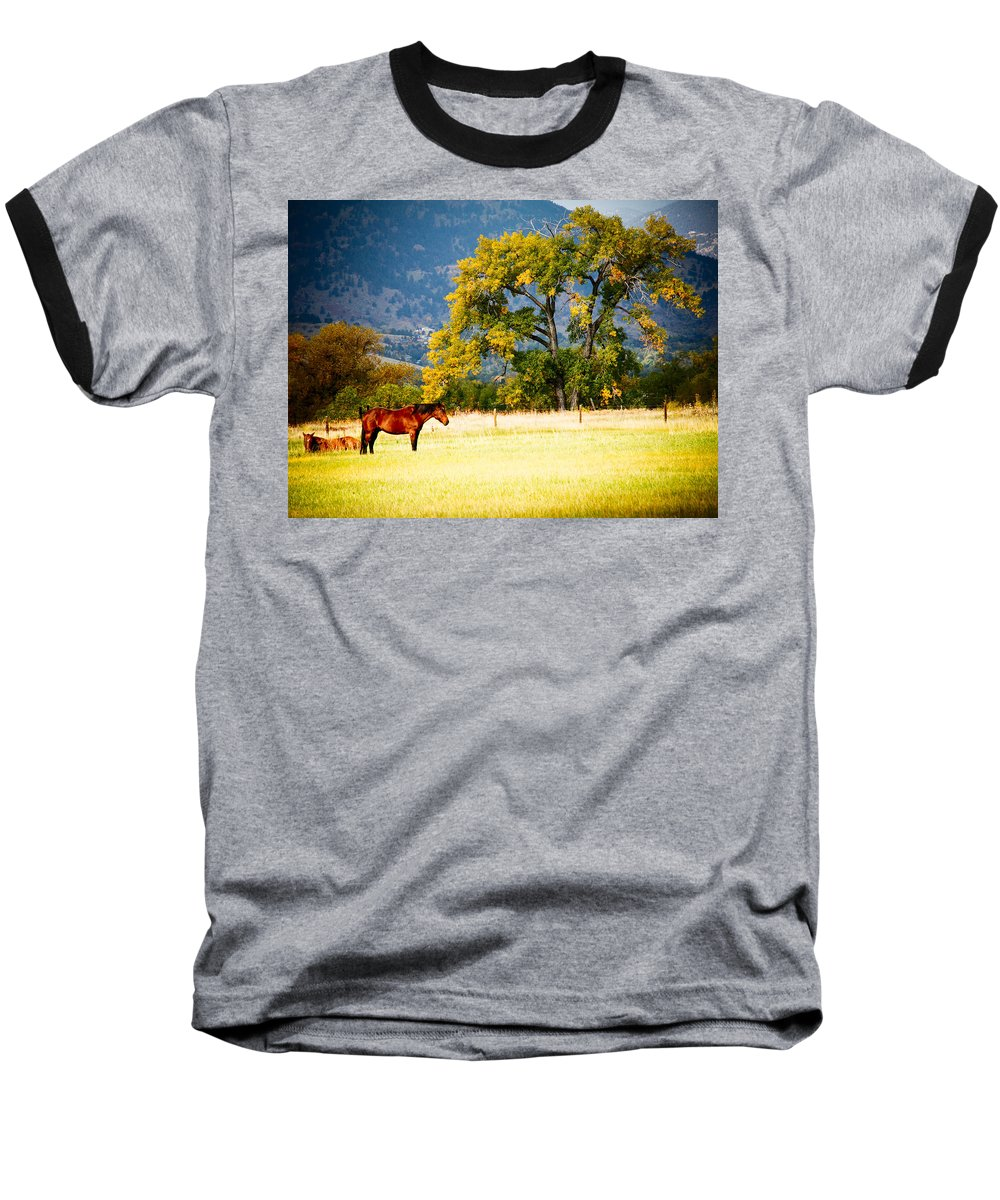 Animal Baseball T-Shirt featuring the photograph Two Horses by Marilyn Hunt