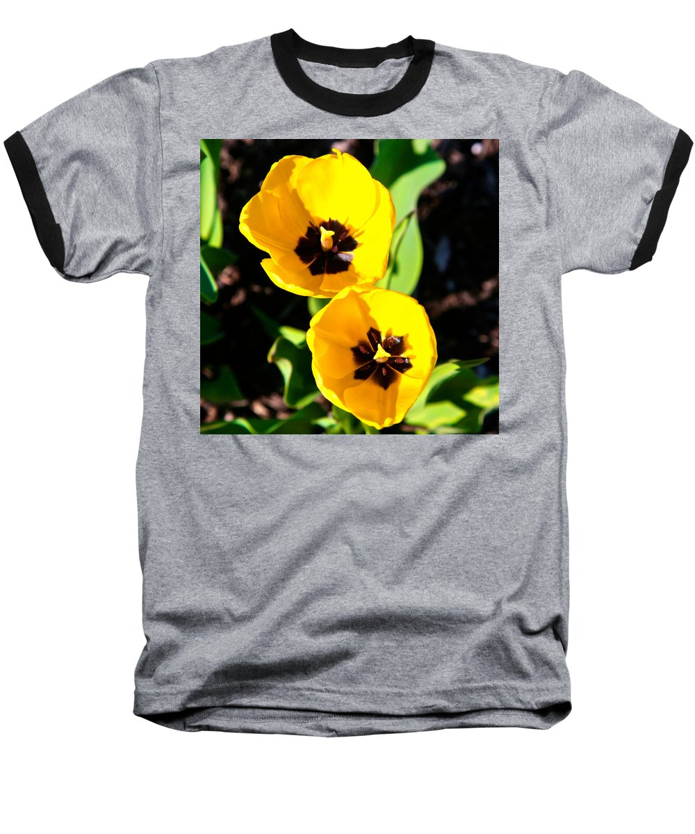 Related Tags: Flowers Artwork Baseball T-Shirt featuring the photograph Two Tulips 2 by Robert Pearson