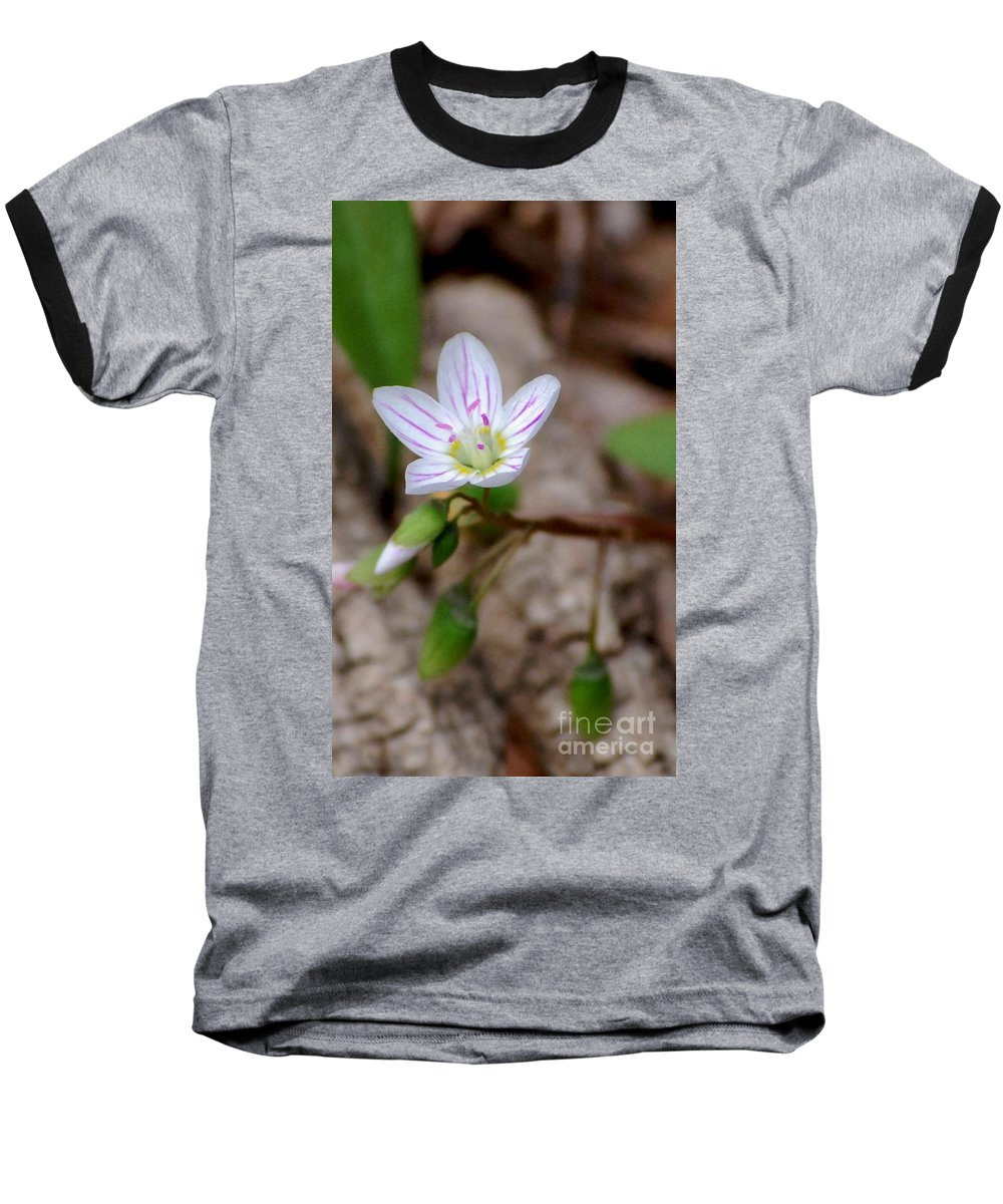 Floral Baseball T-Shirt featuring the photograph Untitiled Floral by David Lane