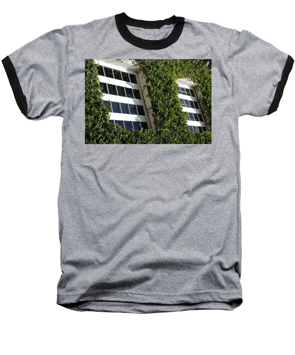 Architecture Baseball T-Shirt featuring the photograph Vines And Glass by Rob Hans