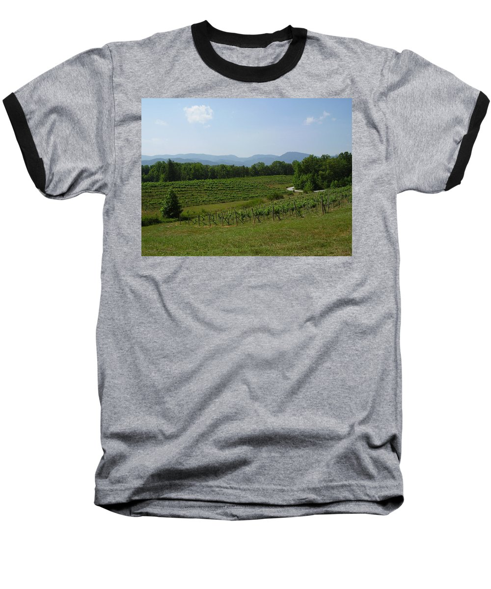 Vineyard Baseball T-Shirt featuring the photograph Vineyard by Flavia Westerwelle