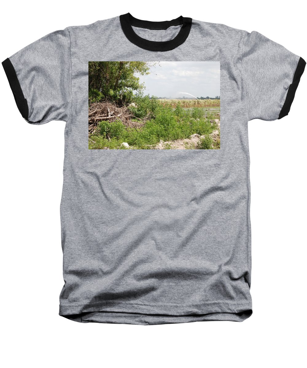 Leaves Baseball T-Shirt featuring the photograph Watering The Weeds by Rob Hans