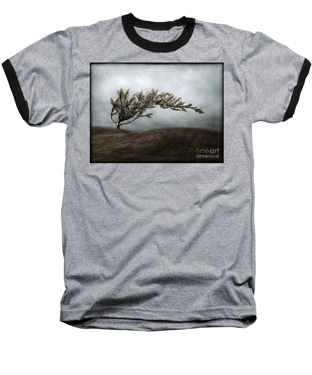 Bend Baseball T-Shirt featuring the photograph We Break And We Bend And We Turn Ourselves Inside Out by Dana DiPasquale