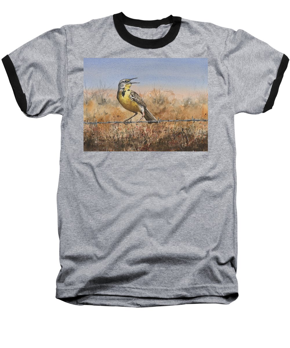 Meadowlark Baseball T-Shirts