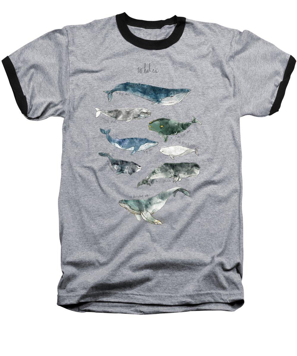 Whale Baseball T-Shirts