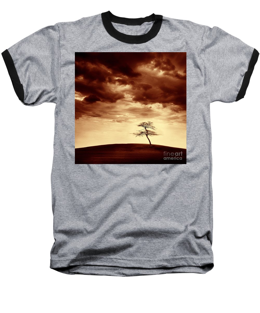 Tree Baseball T-Shirt featuring the photograph What Will Be The Legacy by Dana DiPasquale